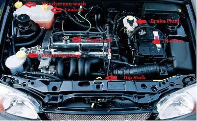 Ford Fiesta Sample