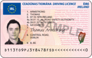 How to get a learner permit or full licence